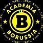 borussia.webp