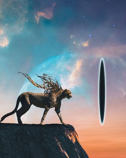 Cosmic Cheetah by Tom Kai