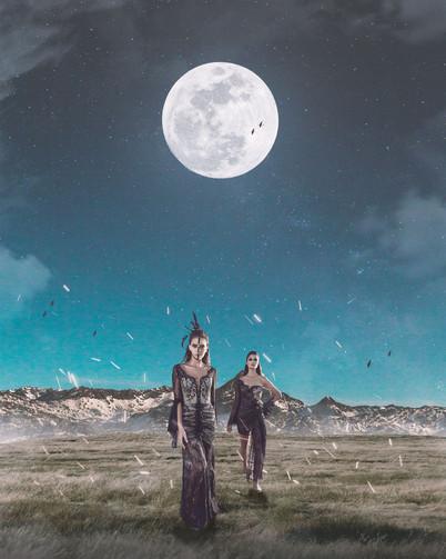 In the Moonlit Night