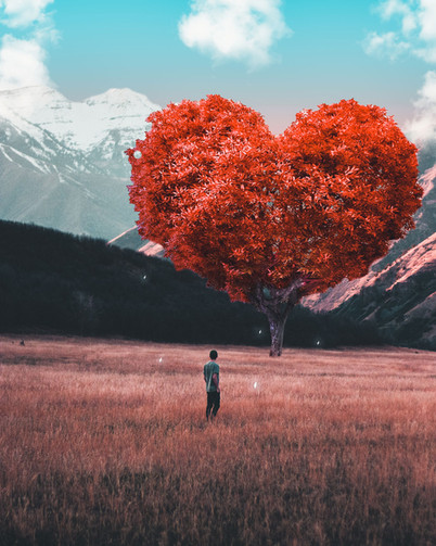 Tree of Love by Tom Kai