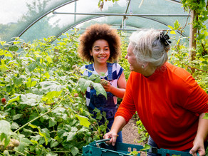 Three Benefits that Seniors Receive from Giving Back