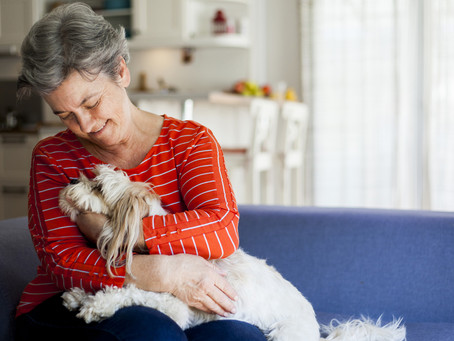 Are Animals the Key to Successful Aging?