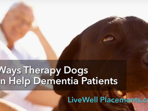 Six Ways Therapy Dogs Can Help Dementia Patients