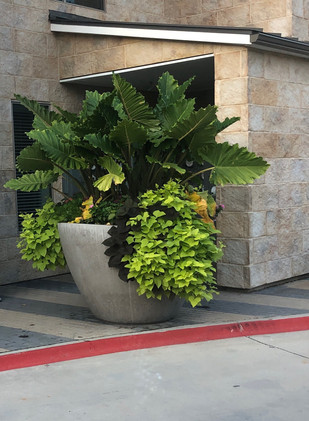 Commercial Seasonal Services by Red Valley Landscape & Construction in Oklahoma