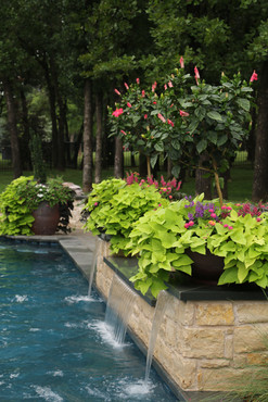 Seasonal Services by Red Valley Landscape & Construction in Barton Creek, Texas