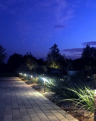 Commercial Landscape Lighting by Red Valley Landscape & Construction in North Austin, Texas