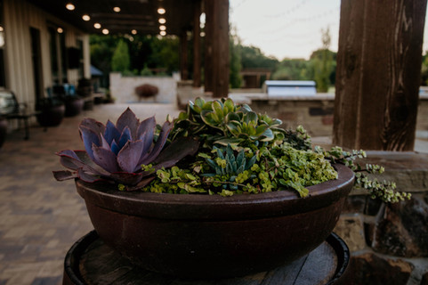 Seasonal Services by Red Valley Landscape & Construction in Lago Vista, Texas