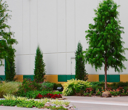 Commercial Landscape Design & Installation by Red Valley Landscape & Construction in ATX