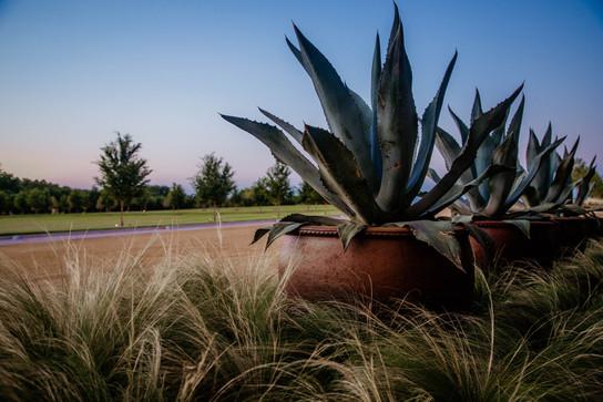 Landscape Design & Installation by Red Valley Landscape & Construction in OKC