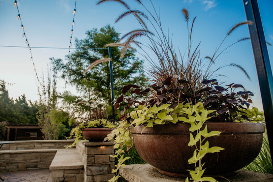 Seasonal Services by Red Valley Landscape & Construction in Austin, Texas