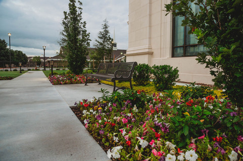 Commercial Landscape Design & Installation by Red Valley Landscape & Construction in North Austin, Texas