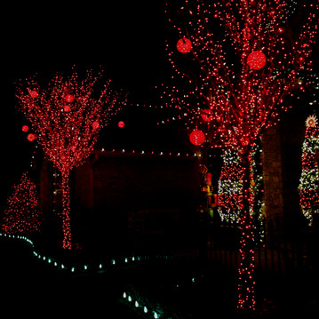 Holiday Lighting by Red Valley Landscape & Construction in Austin