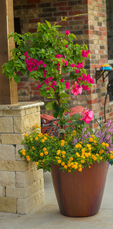 Seasonal Services by Red Valley Landscape & Construction in Nicholas Hills, Ok