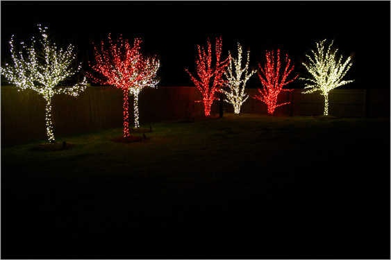 Holiday Lighting by Red Valley Landscape & Construction in Norman, Ok