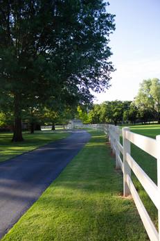 Custom Fences & Trellis by Red Valley Landscape & Construction in Lago Vista, Texas