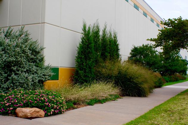 Commercial Landscape Design & Installation by Red Valley Landscape & Construction in Edmond, Ok