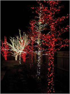 Holiday Lighting by Red Valley Landscape & Construction in Austin, Texas