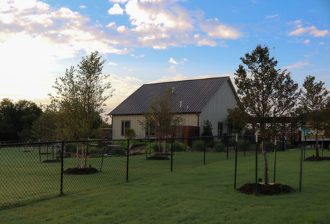Tree Care & Pruning by Red Valley Landscape & Construction in Oklahoma City