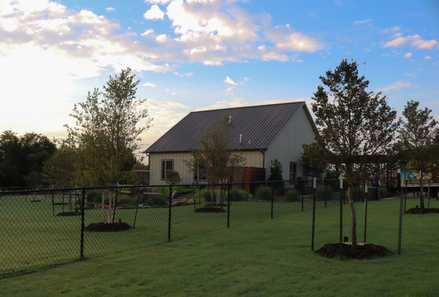 Tree Care & Pruning by Red Valley Landscape & Construction in Lake Travis, Texas
