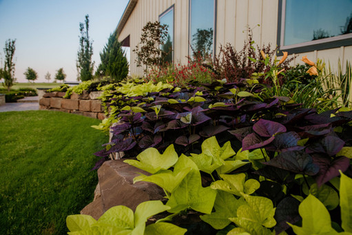 Seasonal Services by Red Valley Landscape & Construction in OKC, Ok