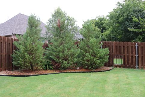 Custom Fences & Trellis by Red Valley Landscape & Construction in Nichols Hills, Ok