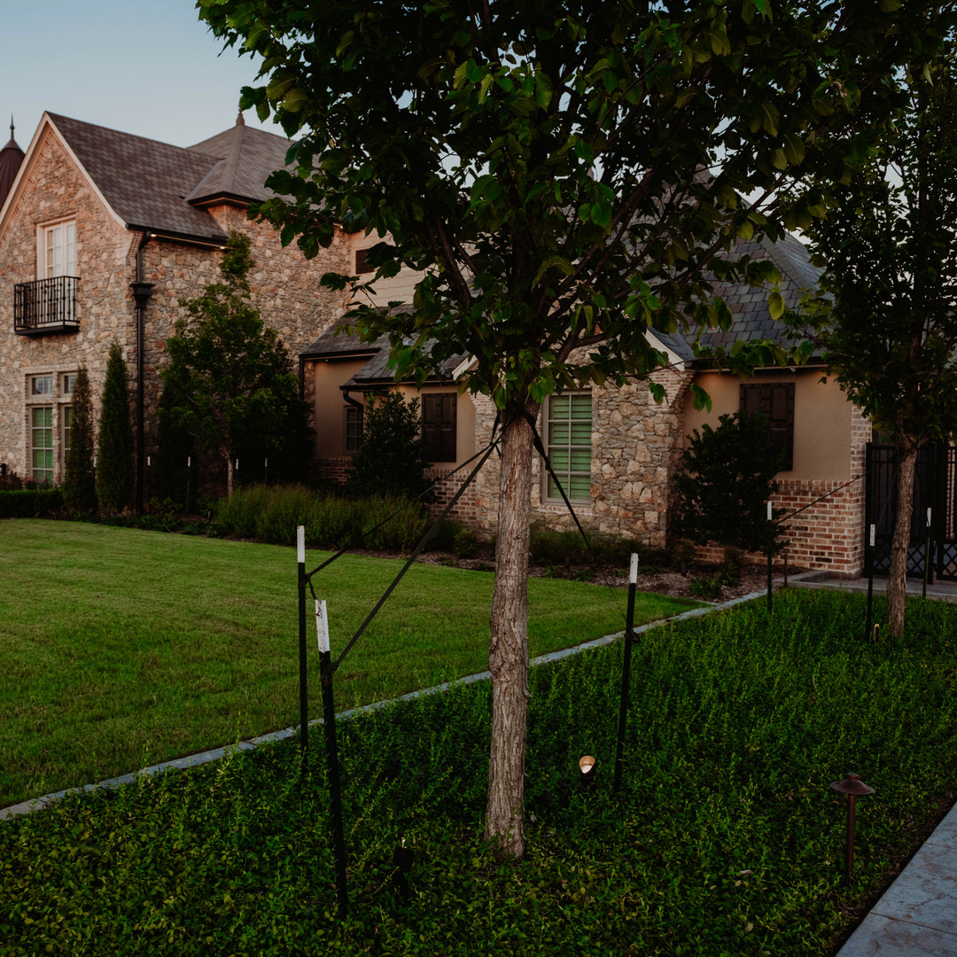 Tree Care & Pruning by Red Valley Landscape & Construction in ATX