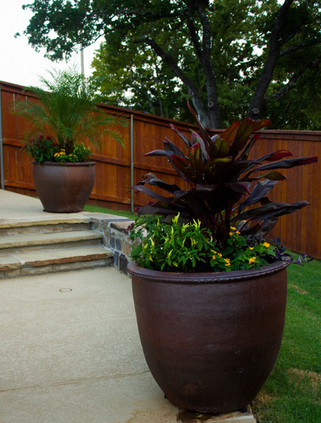 Commercial Seasonal Services by Red Valley Landscape & Construction in ATX