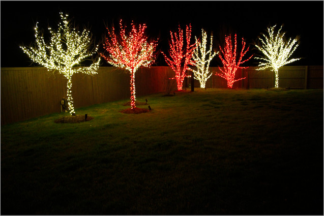 Holiday Lighting by Red Valley Landscape & Construction in Spicewood, Texas