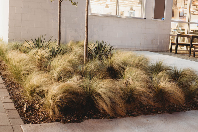 Commercial Landscape Design & Installation by Red Valley Landscape & Construction in OKC, Ok