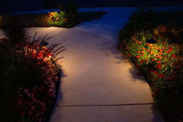 Landscape Lighting by Red Valley Landscape & Construction in Lake Travis Texas