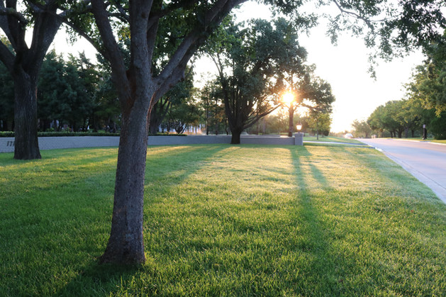 Residential Landscape Maintenance by Red Valley Landscape & Construction in Nichols Hills, Ok
