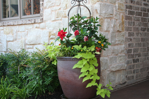 Seasonal Services by Red Valley Landscape & Construction in Jones, Ok