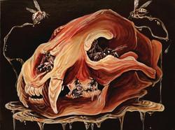 Honey Bear Skull