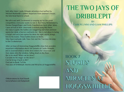 The Eight Stories of the Two Jays