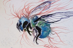 zombie fungus bee