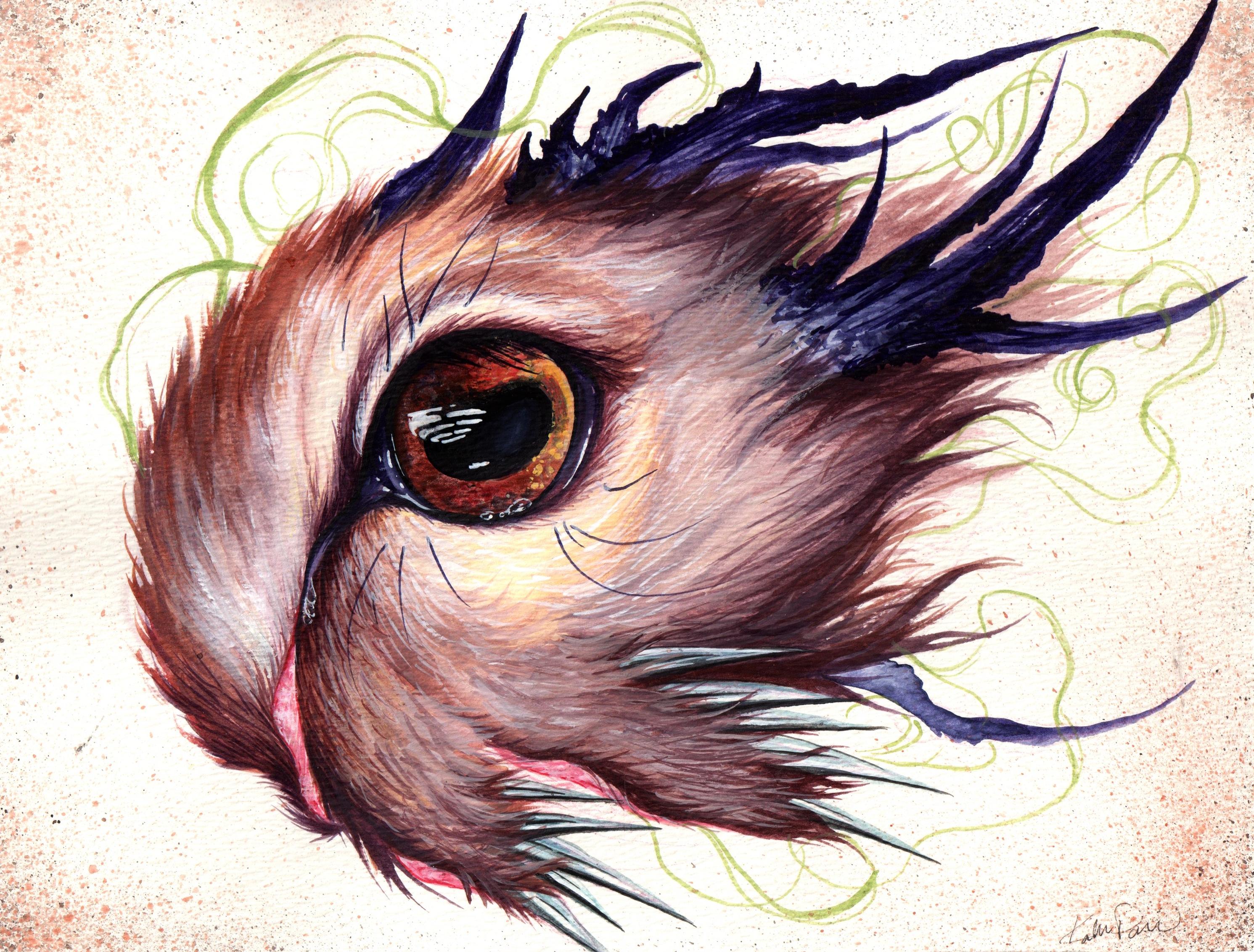 Deer eye