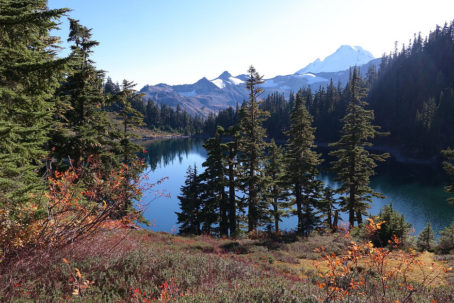 lake in mountains with pine trees