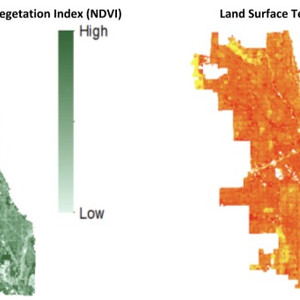 Chicago Green Roof Analysis