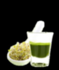 vegasus, juices, juicing, raw food, Sprouts, Broccoli, vegan, sprouts, wheatgras, red beets, natural, sulphoraphan, cold pressed, sgs, myrosinase, enzymes