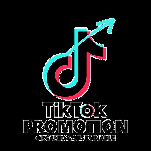 TikTok Promotion