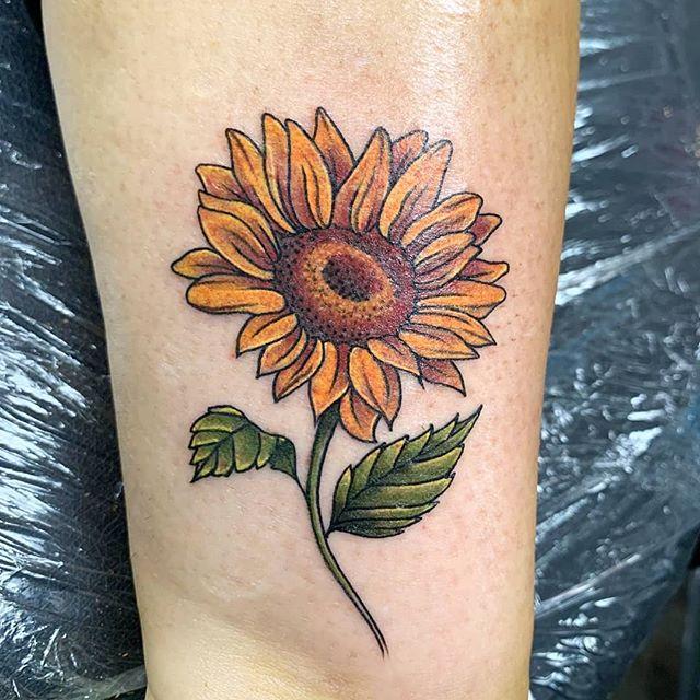 Sunflower season by _justin_zak_art _#fl