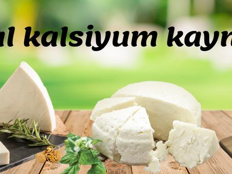 Türkiye Tarım Dergisi - Gıda Bilimi ve Teknolojisi-Erzincan Tulum Peyniri Üzerine Makale