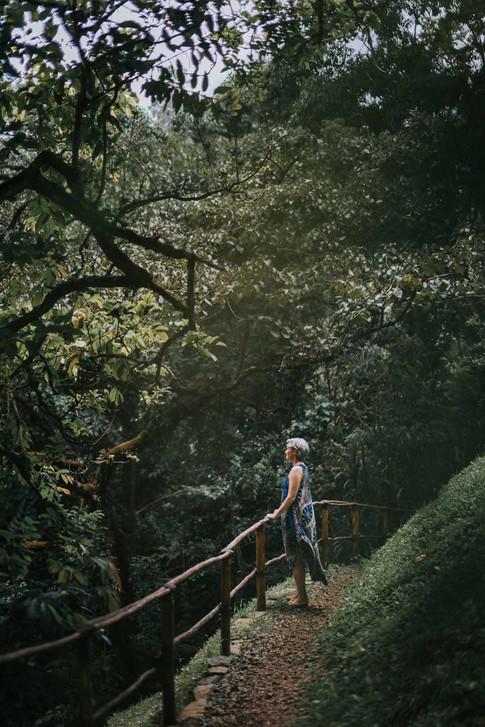 Path to Toben Cottage