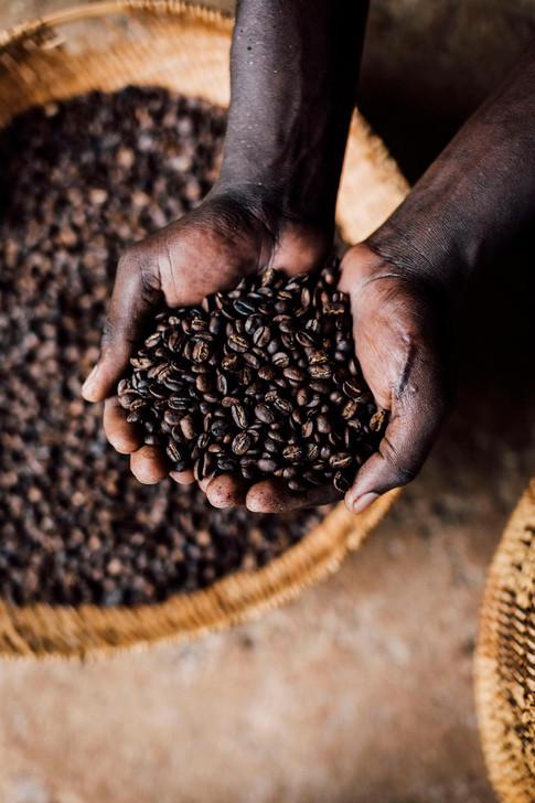 Hand Roasted Organic Coffee