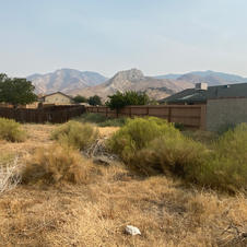 Large Lot Mountain View