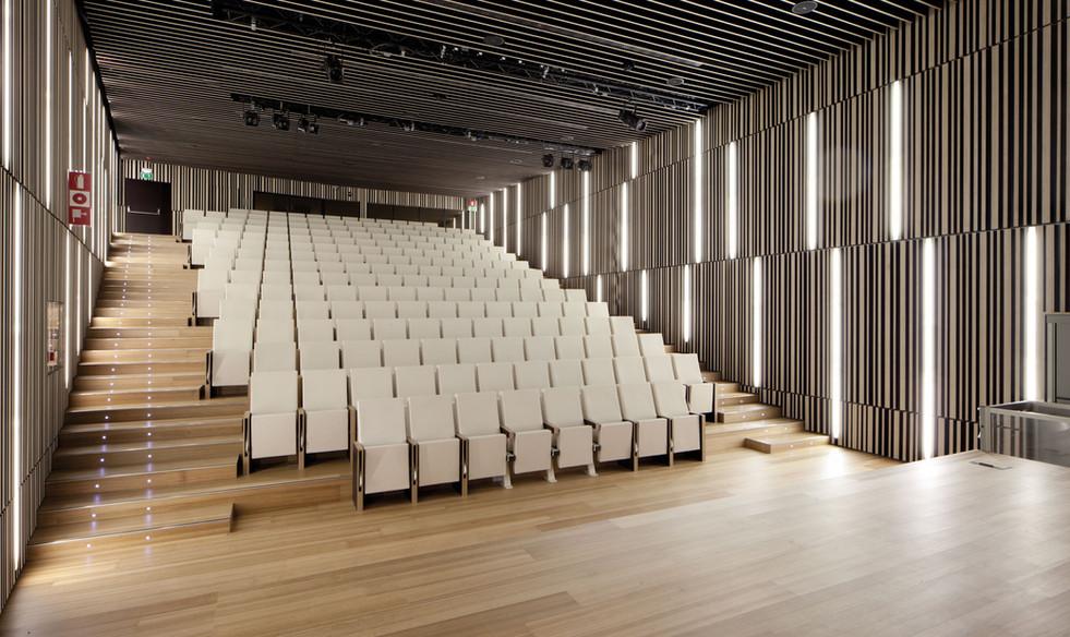 Eucalyptus Flooring and Stairs