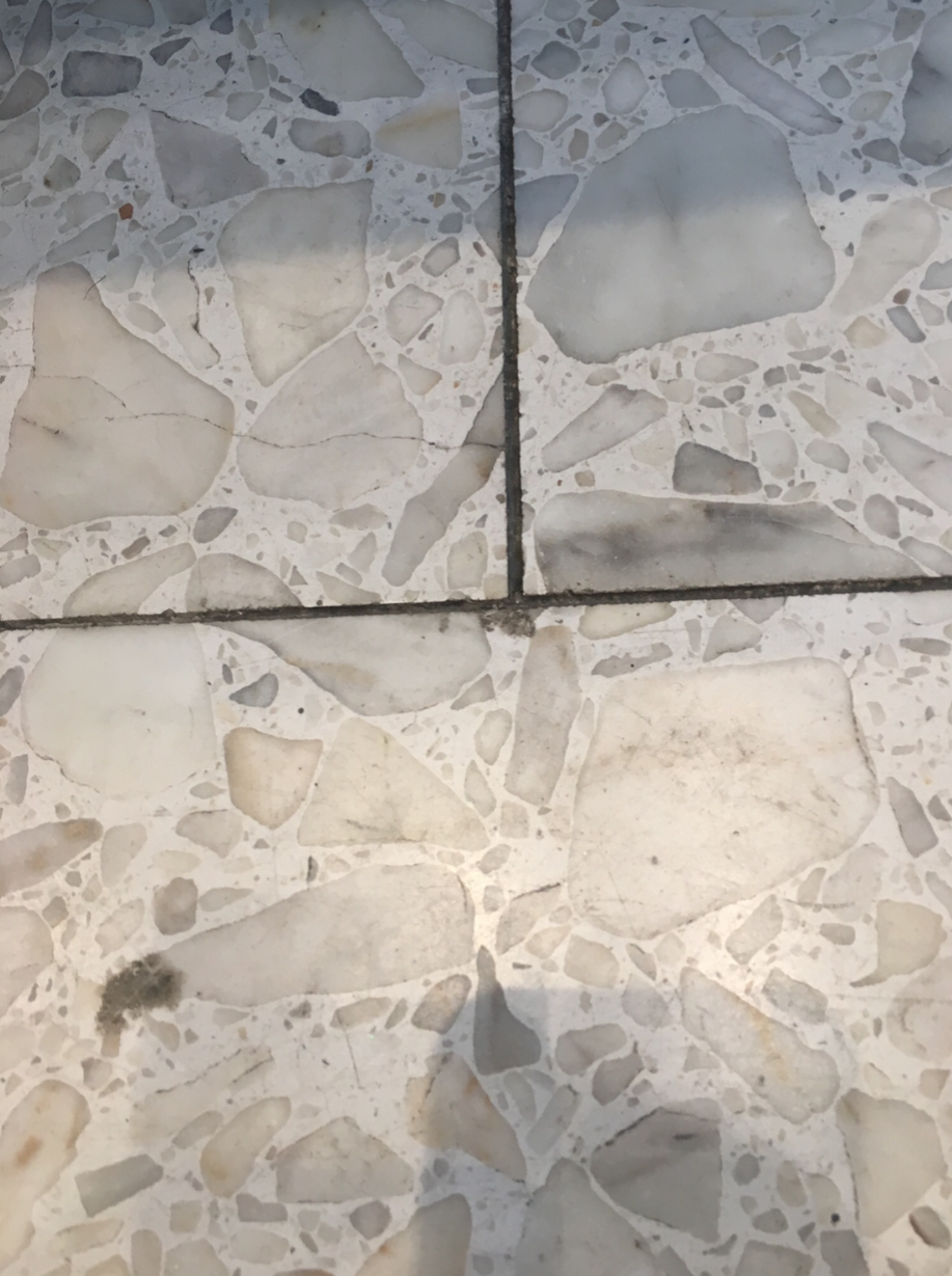 Dirty Terrazzo Tile Grout Joint