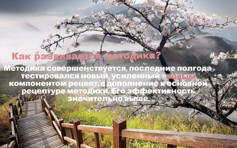 358263583_edited_edited.jpg