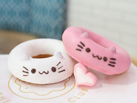 DIY Mochi Cat Donut Kit + Giveaway