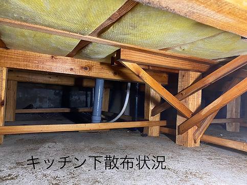 S__18047006.jpg